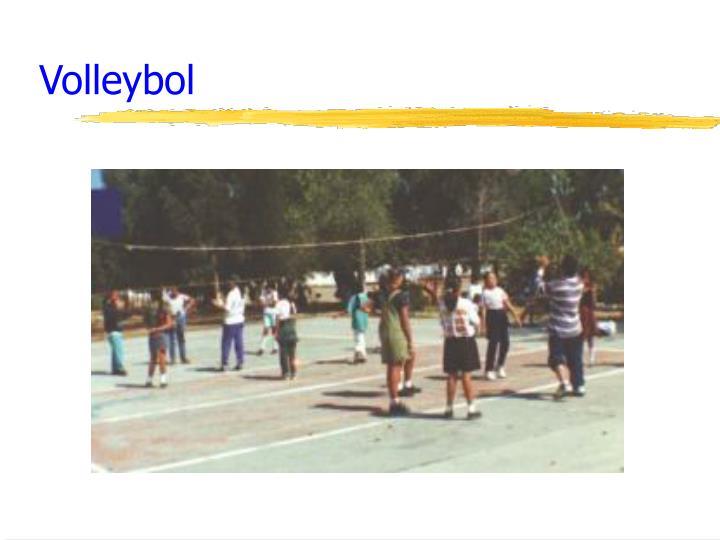 Volleybol