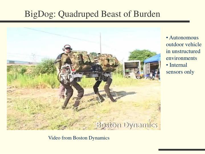 BigDog: Quadruped Beast of Burden