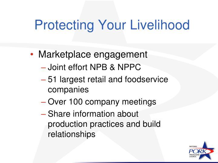Protecting Your Livelihood