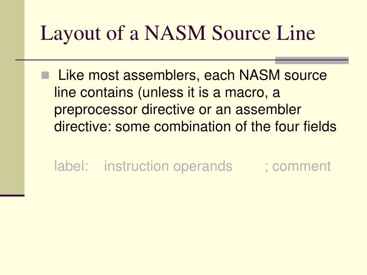 Layout of a NASM Source Line