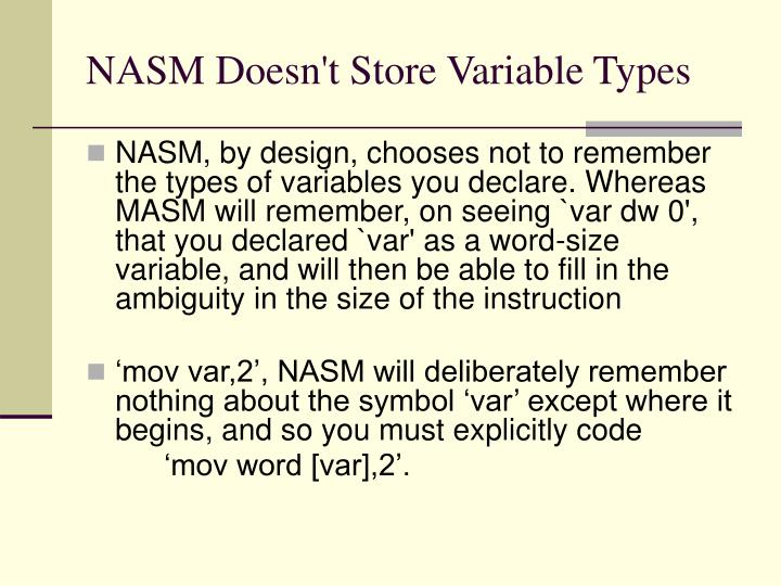 NASM Doesn't Store Variable Types