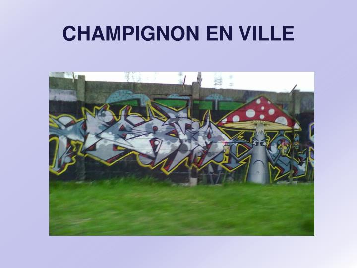 CHAMPIGNON EN VILLE