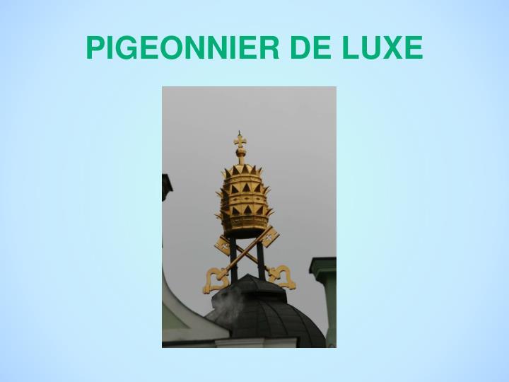 PIGEONNIER DE LUXE