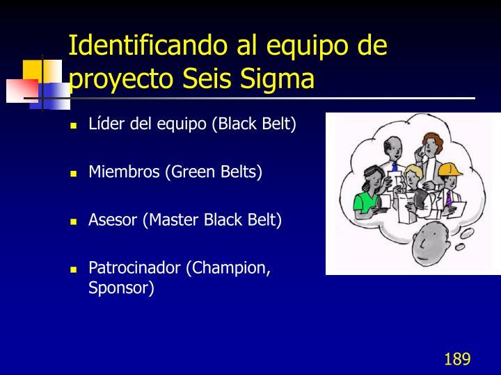 Identificando al equipo de proyecto Seis Sigma