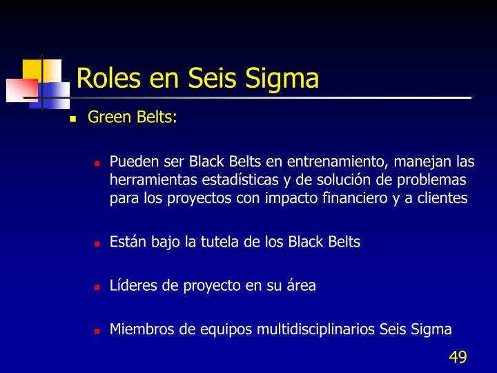 Roles en Seis Sigma