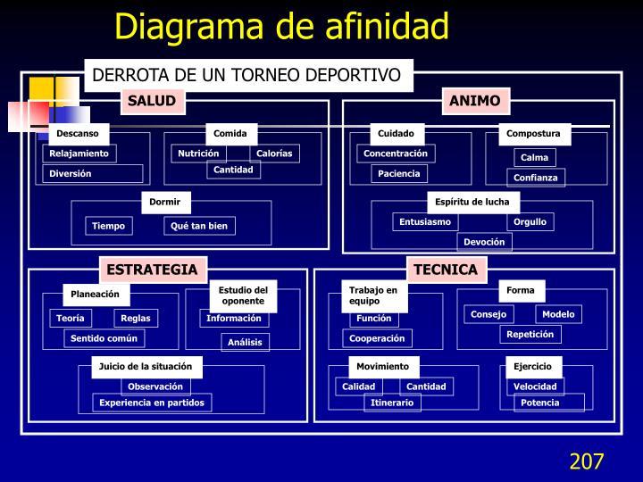 Diagrama de afinidad