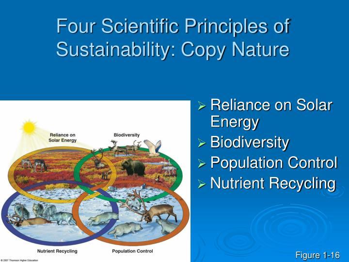Four Scientific Principles of Sustainability: Copy Nature