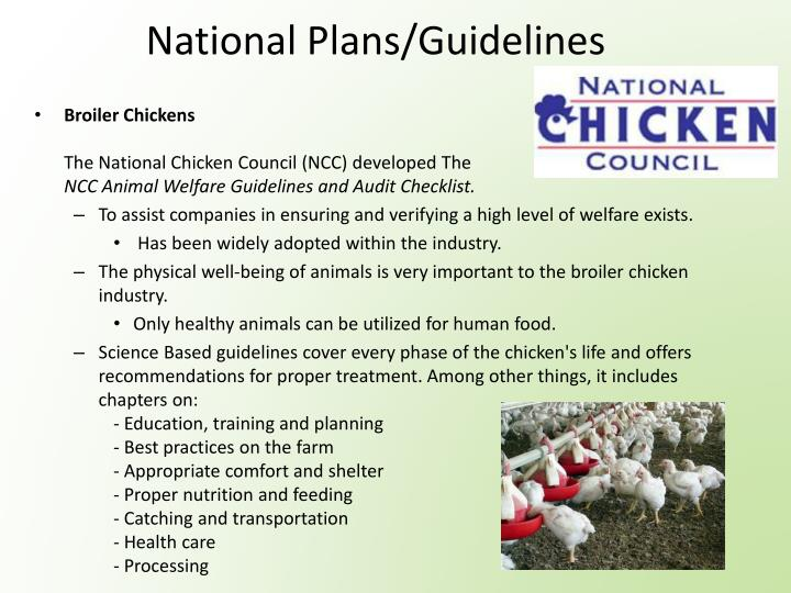 National Plans/Guidelines