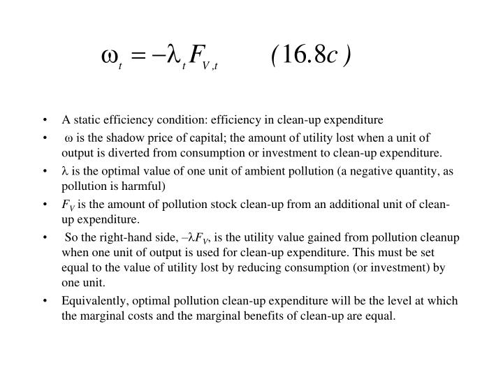 A static efficiency condition: efficiency in clean-up expenditure
