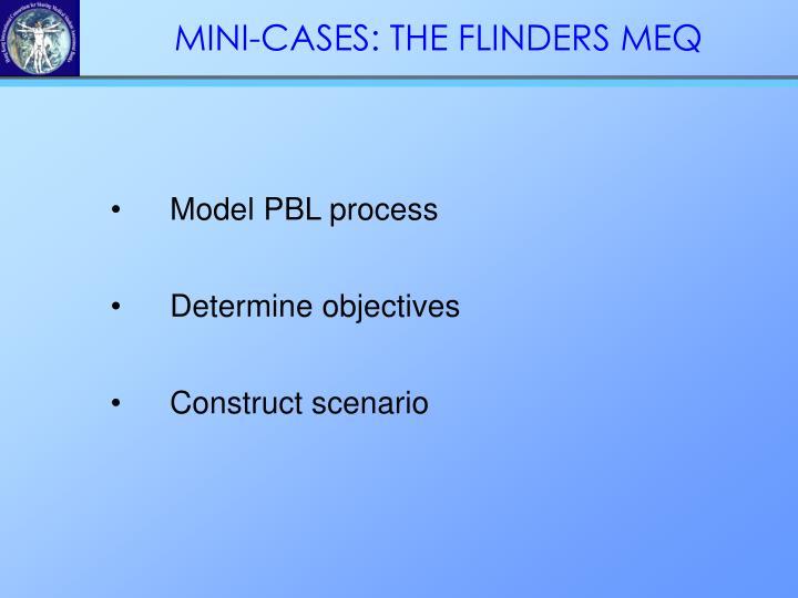 Model PBL process
