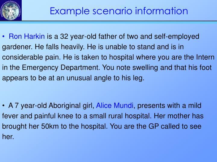 Example scenario information