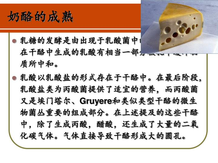 奶酪的成熟