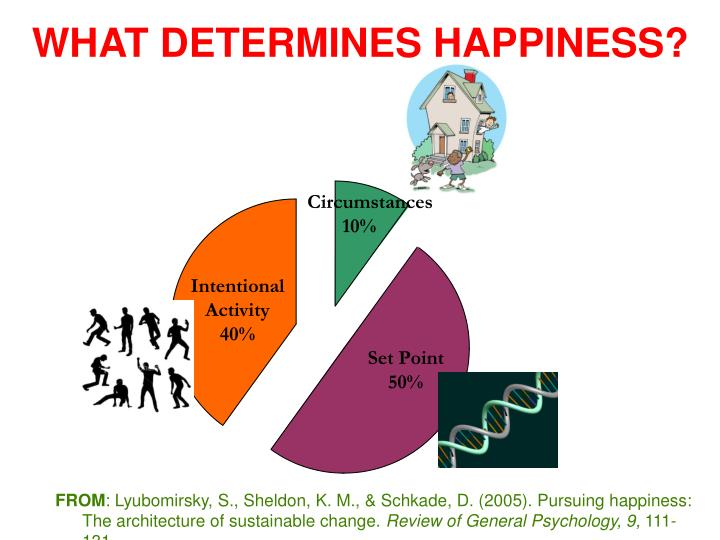 WHAT DETERMINES HAPPINESS?