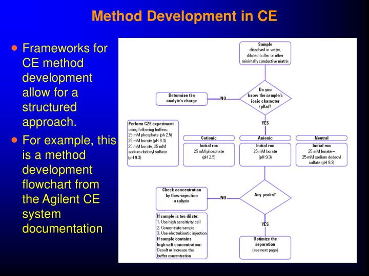 Method Development in CE