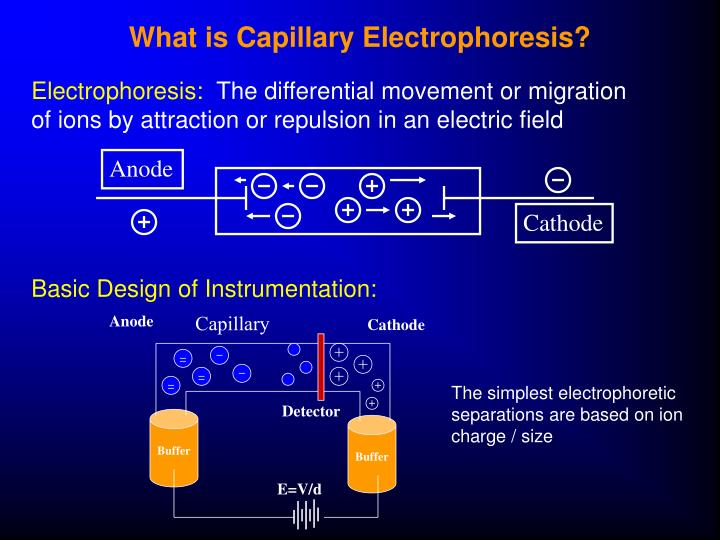 What is capillary electrophoresis