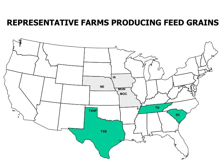 REPRESENTATIVE FARMS PRODUCING FEED GRAINS