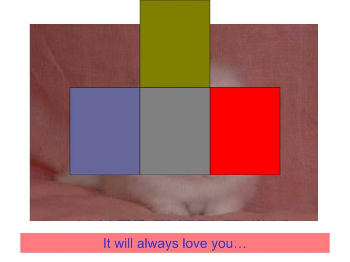 It will always love you…