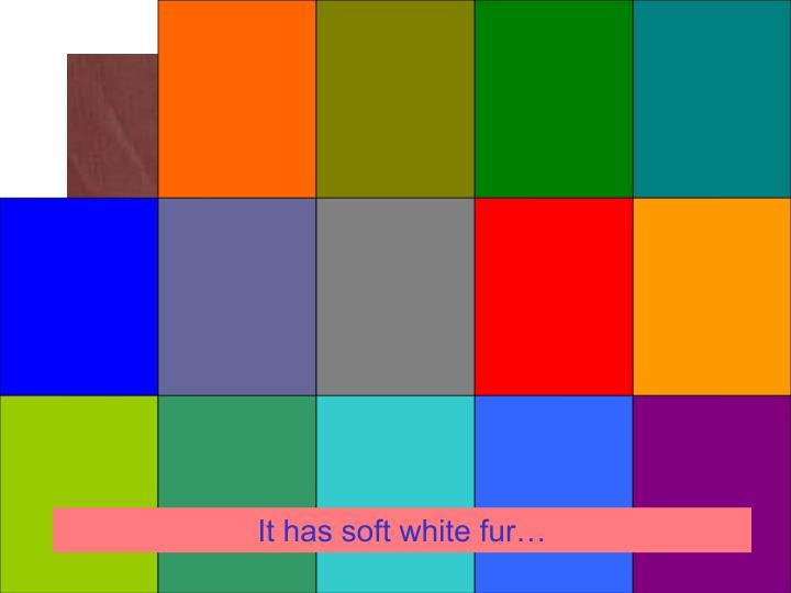 It has soft white fur…