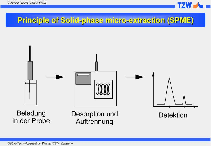 Principle of Solid-phase micro-extraction (SPME)
