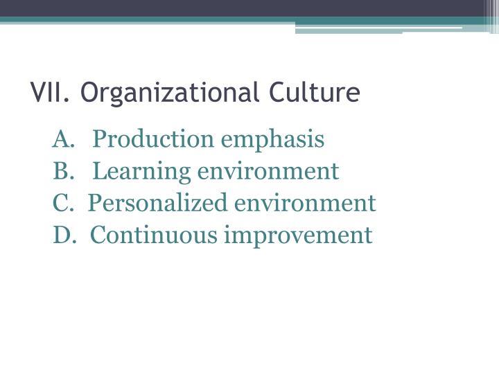 VII. Organizational Culture