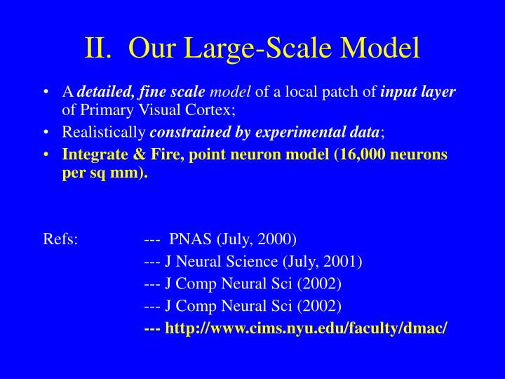 II.  Our Large-Scale Model