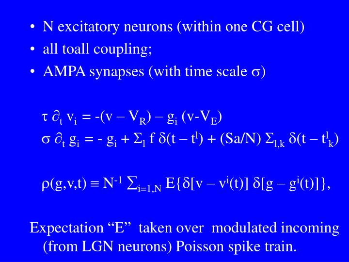 N excitatory neurons (within one CG cell)
