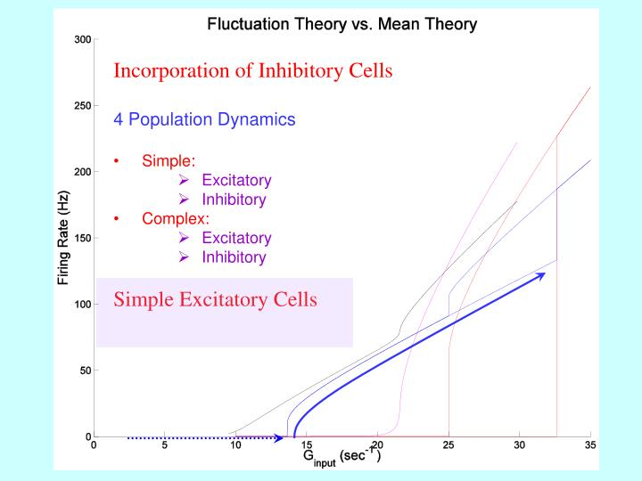 Incorporation of Inhibitory Cells