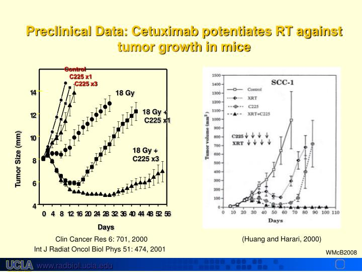 Preclinical Data: Cetuximab potentiates RT against tumor growth in mice