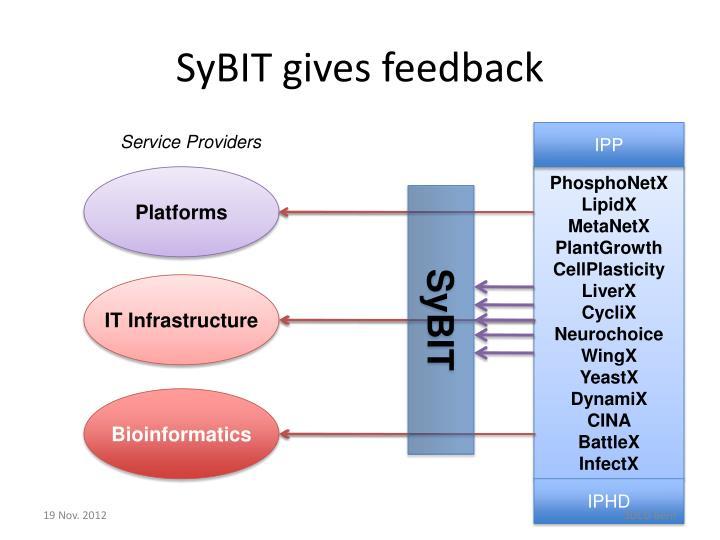 SyBIT gives feedback