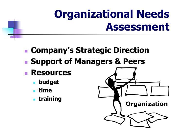 Organizational Needs Assessment