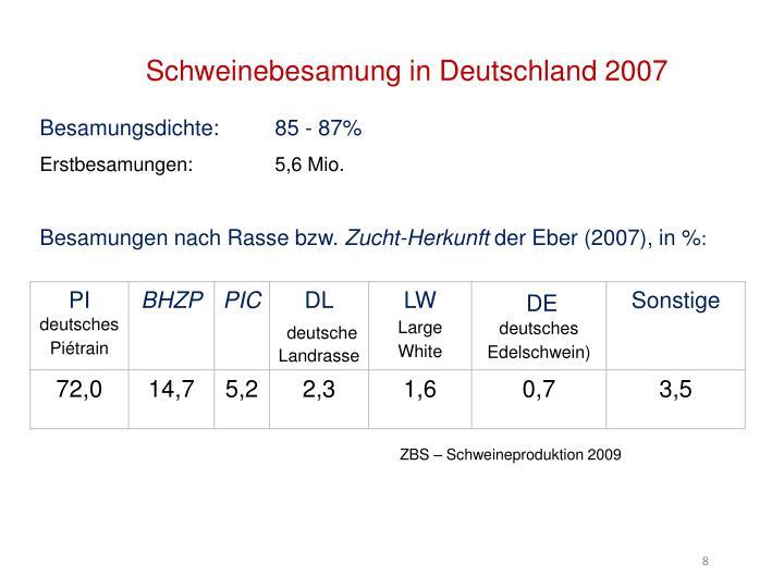 Schweinebesamung in Deutschland 2007