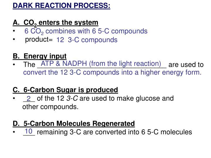 DARK REACTION PROCESS:
