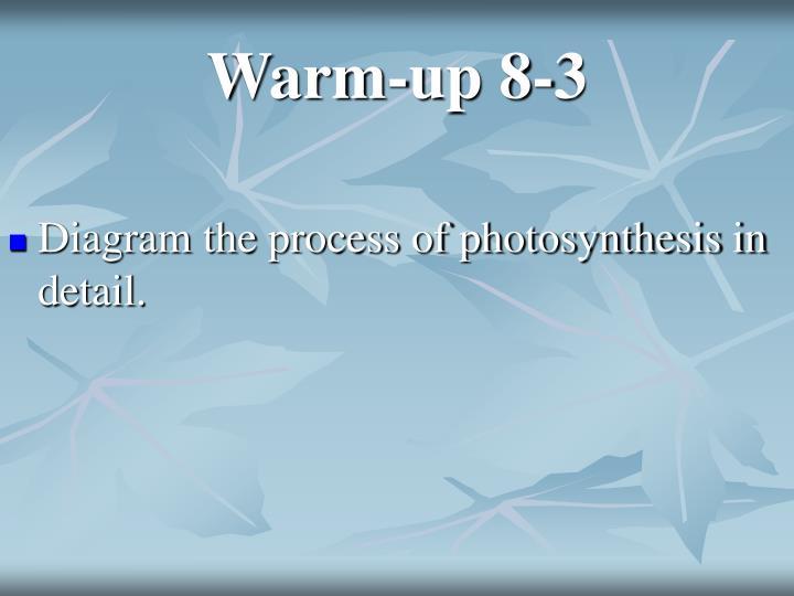 Warm-up 8-3
