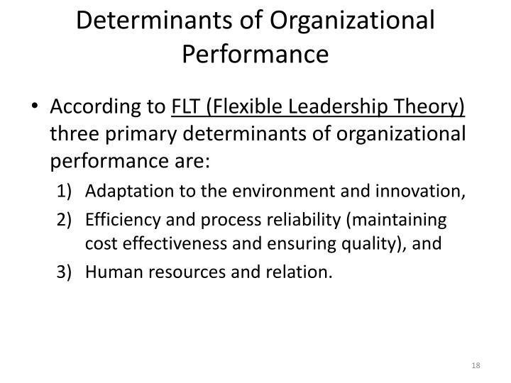 Determinants of Organizational Performance