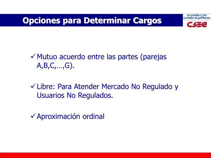 Opciones para Determinar Cargos