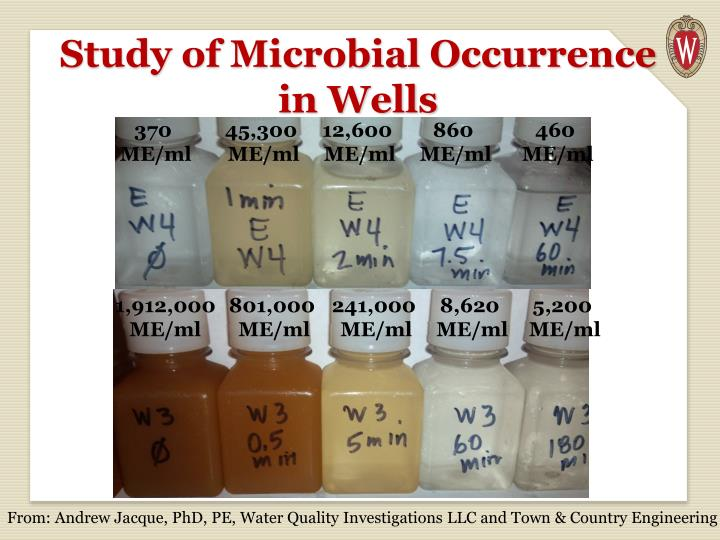 Study of Microbial Occurrence