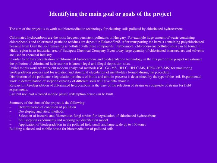 Identifying the main goal or goals of the project
