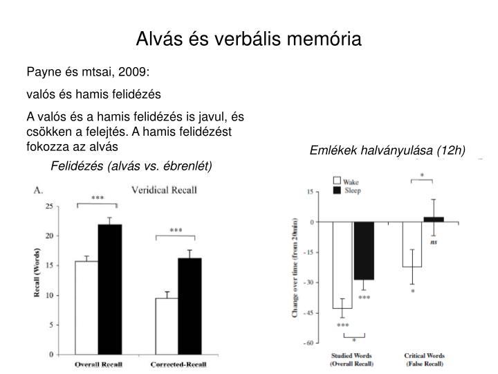 Alvás és verbális memória