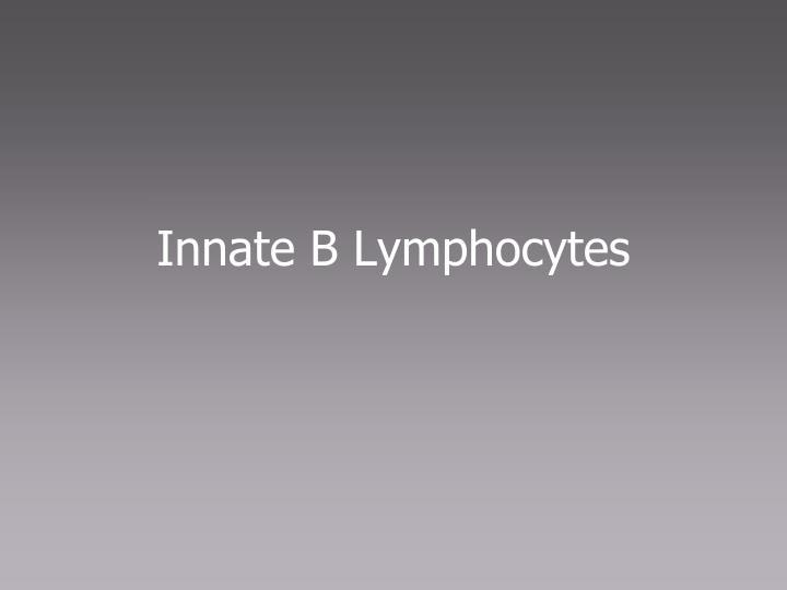 Innate B Lymphocytes