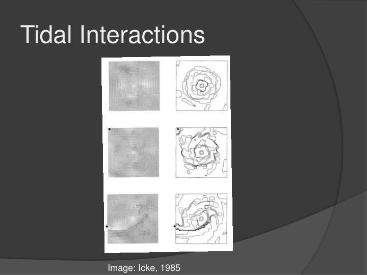 Tidal Interactions