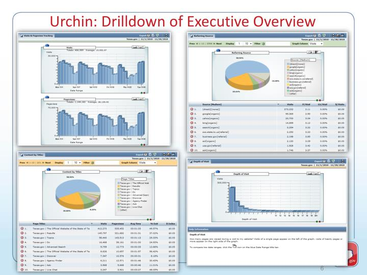 Urchin: Drilldown of Executive Overview