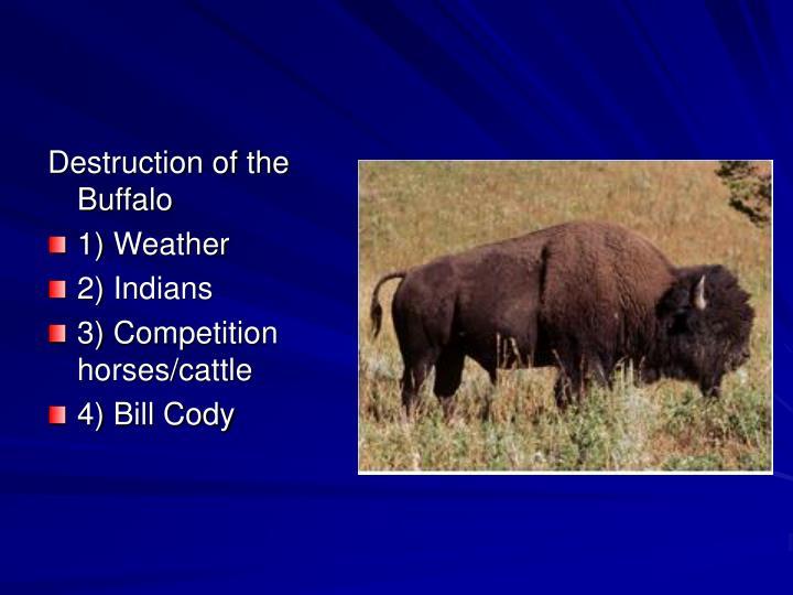Destruction of the Buffalo