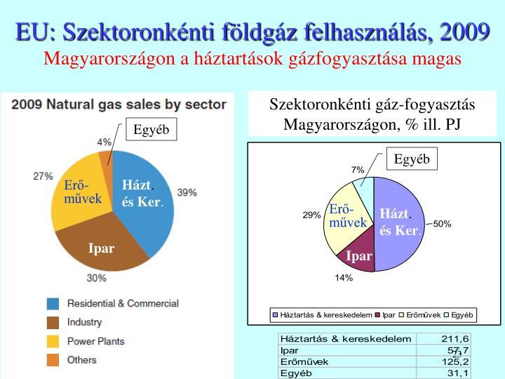 EU: Szektoronkénti földgáz felhasználás, 2009