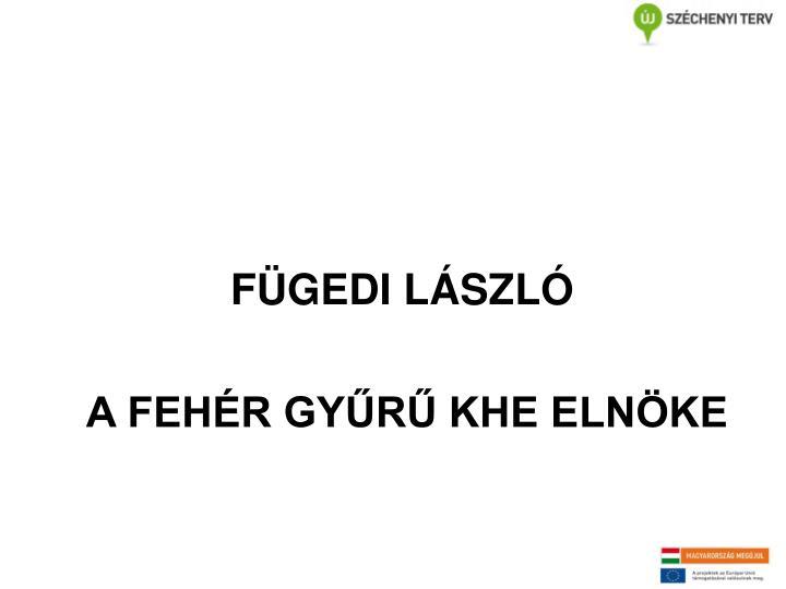 FÜGEDI LÁSZLÓ