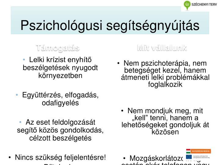 Pszichológusi segítségnyújtás
