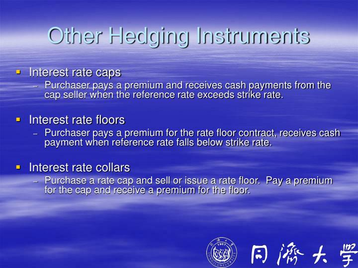 Other Hedging Instruments