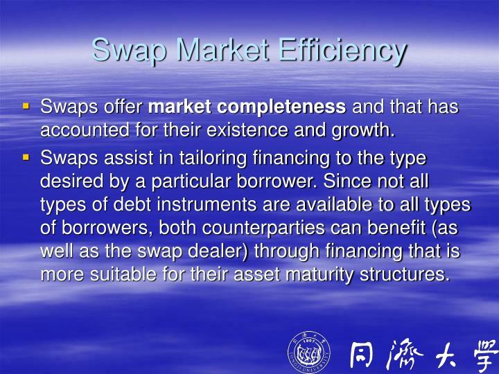 Swap Market Efficiency