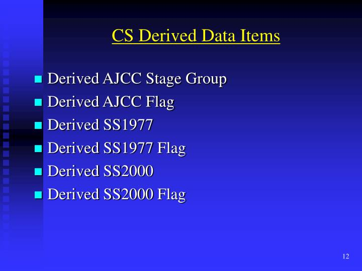 CS Derived Data Items