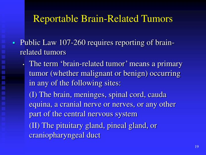 Reportable Brain-Related Tumors