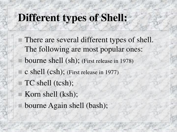 Different types of Shell: